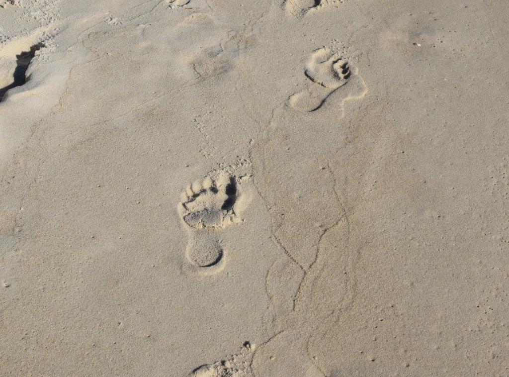 Pas dans le sable